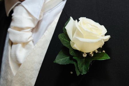 buttonhole: Grooms buttonhole is a white rose. Stock Photo