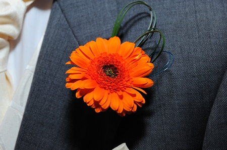 buttonhole: Grooms butonhole flower is orange. Stock Photo