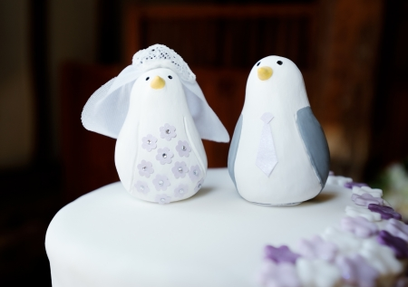 Wedding cake topper closeup detail of bride and groom penguins Stock Photo - 19356198