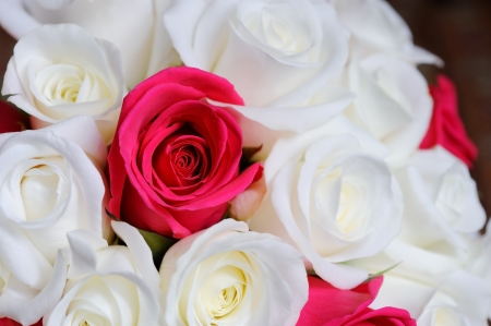deatil: Brides bouquet of red and white roses closeup showing deatil on wedding day
