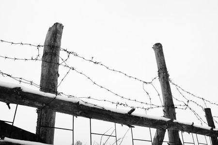 barblock: barbed wire and fence