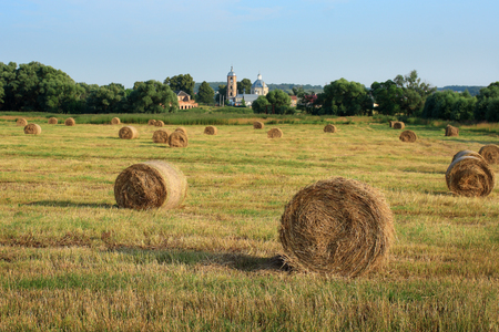 Landscape with straw bales amongst fields in Russia