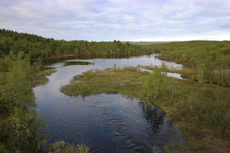tundra: river in tundra above Arctic Circle, Russia