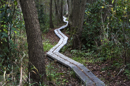 Keep on track the way forward