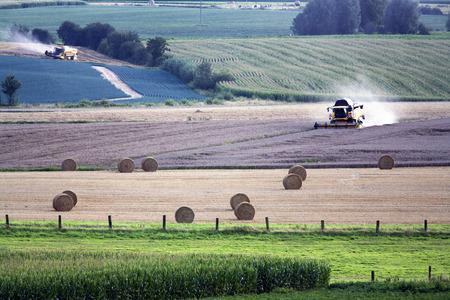 Oogsten met maaidorsers in het noorden van Frankrijk Stockfoto