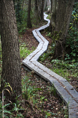 the way forward: Keep on track the way forward