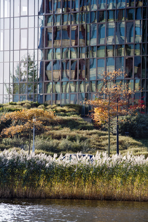 generic location: Nice combination of trees in autumn and a contemporary office building Stock Photo
