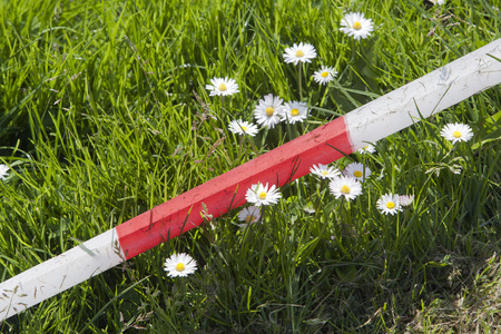 cordon tape: Red and white ribbon makes a boundary on the ground for kids games