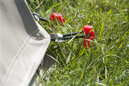 Close-up of a red tent peg on a camping Stock Photo