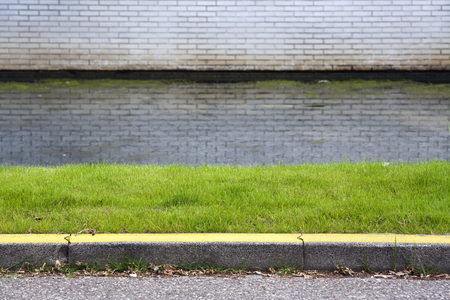Grass, water and a yellow curb. No way to park here. Archivio Fotografico