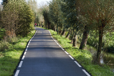 single lane road: Single lane, two-way asphalt road in the Netherlands. Stock Photo
