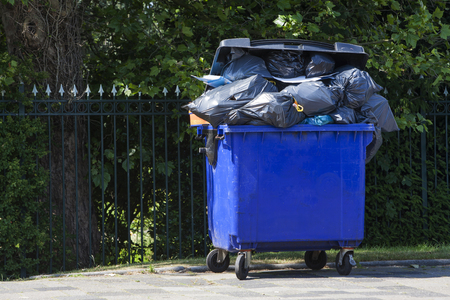Blue wheeled garbage can overflowed with garbage bags in the street, in front of a garden fence. Stockfoto