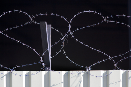 barbed wire fence: Barbed wire fence