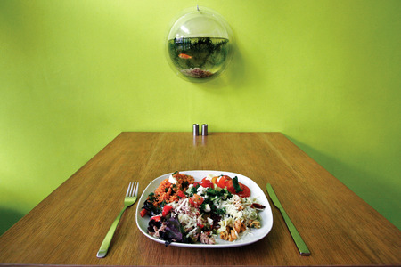 salad plate: Salad plate in a green retro interior
