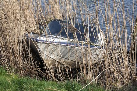recreational: Sunken recreational boat half underwater Stock Photo
