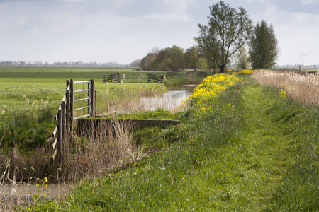 rural area: Grass path in a rural area of meadows