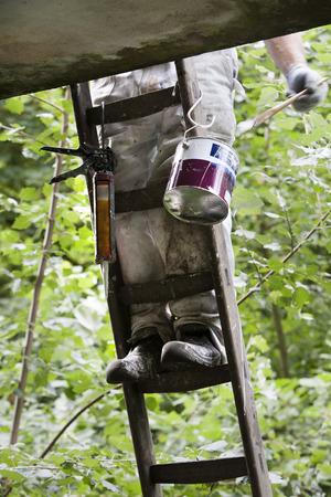 zapatos de seguridad: Pintor de brocha gorda en una escalera que llevaba sus zapatos de seguridad