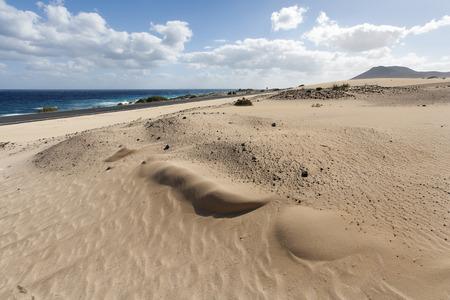 desierto: La carretera a lo largo de las dunas de arena en el oc�ano y Fuerteventura