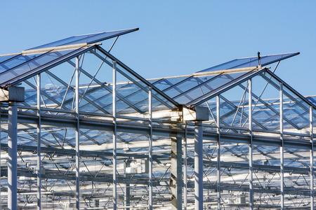 westland: Greenhouse in Westland in the Netherlands