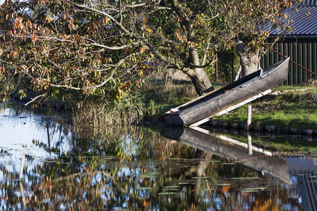 rowing boat: Tranquil scene of a rowing boat and tree with nice  reflections