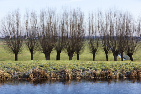 Frozen water in a winter polder landscape in the Netherlands Stock Photo