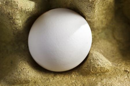 Wit organisch ei in een doos bestaande uit 50 procent grasvezels en volledig recyclebaar.