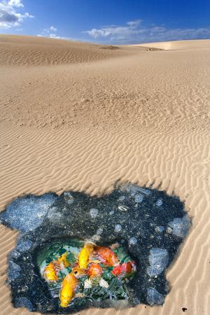 Broeikaseffect concept met smeltend ijs en toenemende gebied van woestijnen