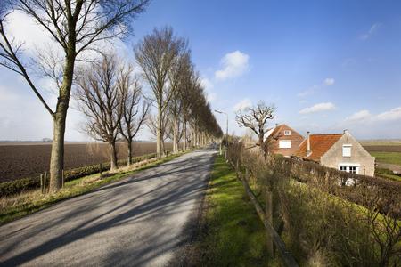 Country road on a dike in Dutch polder landscape in the Hoeksewaard in the Netherlands Stockfoto