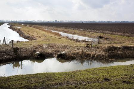 Plowed field in Dutch polder landscape in the Hoeksewaard in the Netherlands