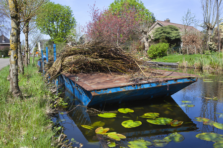 Willow twigs on a pontoon in Reeuwijk in the Netherlands Stockfoto