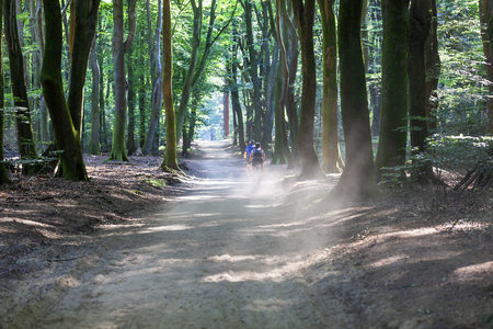 Mountain bikers in Speulderbos or forest of the dancing trees on the Veluwe in the Netherlands