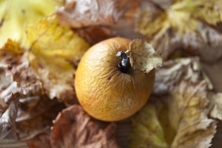 Wrinkled apple and leaves on a wooden table in autumn