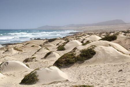 Sand dunes landscape with the Atlantic Ocean in the background near Cabo Santa Marina on Boa Vista in Cape Verde