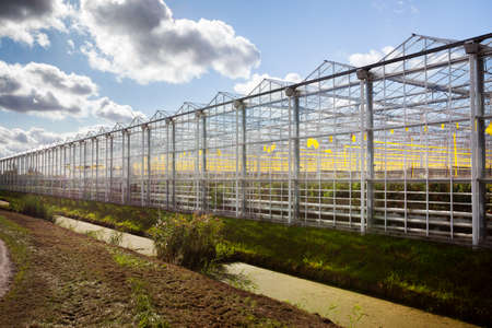 Greenhouse exterior under a sky with nice clouds in Westland in the Netherlands