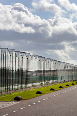 Greenhouse exterior under a sky with nice clouds in Westland in the Netherlands Stockfoto
