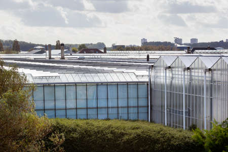 Greenhouse exteriors in Westland in the Netherlands Archivio Fotografico