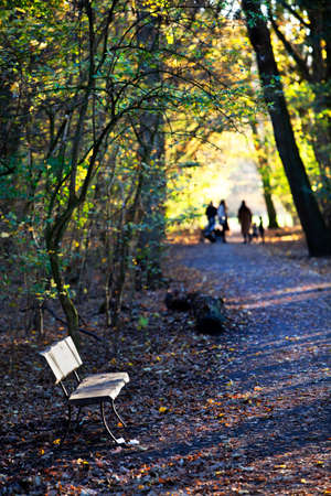 Bench in park Kralingse Bos in Rotterdam with a family in the background in autumn