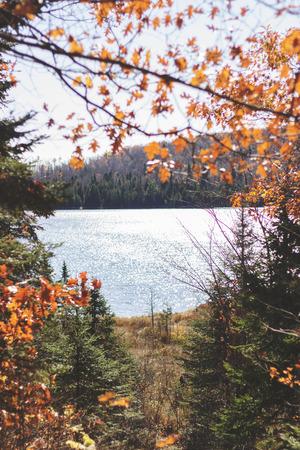 Autumn Lake through Trees Stock Photo