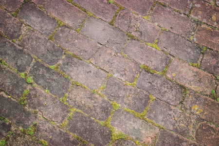 mossy: Mossy Bricks Background