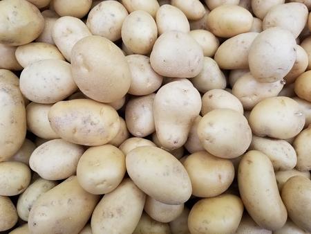 Fresh organic potato in the market. A heap of potatoes. Close-up potato texture. Macro potato