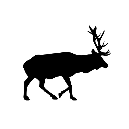 deer (wapiti) vector black silhouette isolated on white background