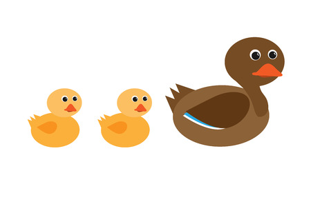 mother duck and ducklings in a row vector characters isolated on white background