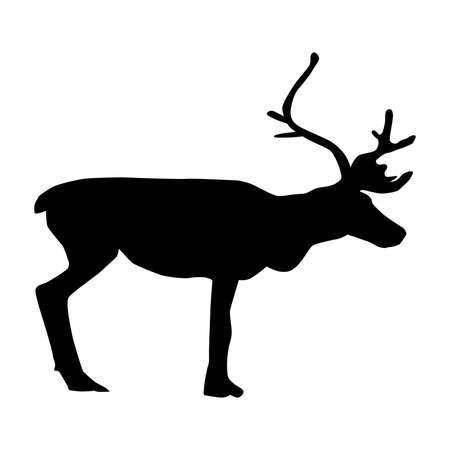 reindeer (Rangifer tarandus), caribou, vector silhouette isolated on white background