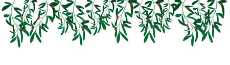 decorative natural rim, branches of mistletoe vector illustration isolated on white background 矢量图像