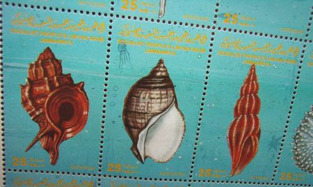 lybia: snail shells on lybian stamps
