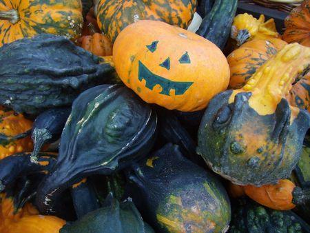 coarse: coarse pumpkins