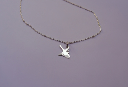 Nazca hummingbird on a necklace photo