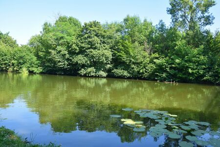 Lake Nature Scenery Background in Czech Republic Stock fotó