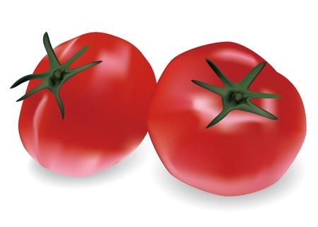 Illustration of tomatoes Illustration