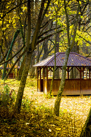 Wooden cabin in the woods with a metal roof, the highlight in autumn colors. photo